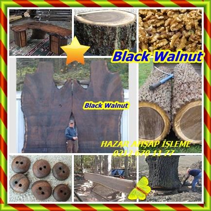 catsBlack Walnutwe33