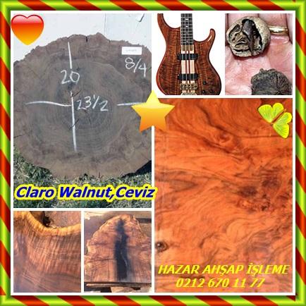 catsClaro Walnut,Ceviz333