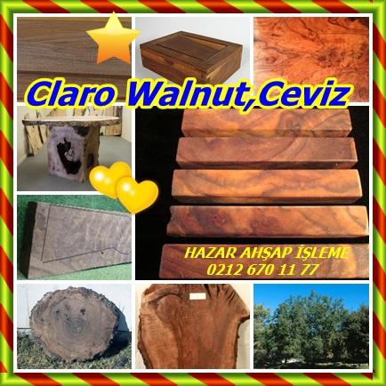 catsClaro Walnut,Ceviz567