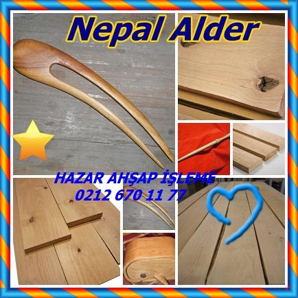 catsNepal Alder55