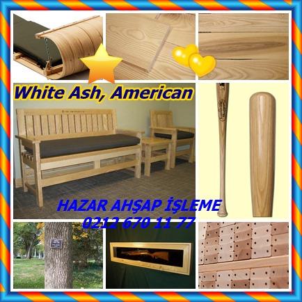 catsWhite Ash, American 888