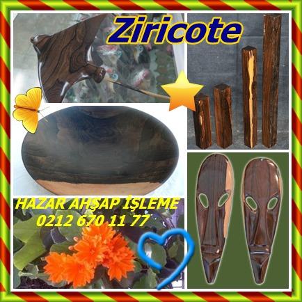 catsZiricote (Cordia dodecandra)55