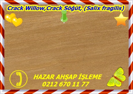 crack-willow-se33