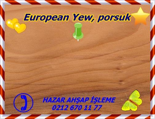 english-yeEuropean Yew