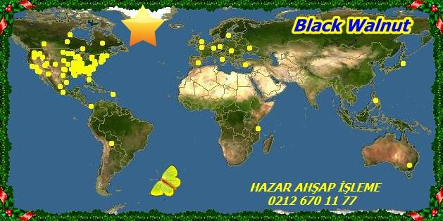 map_of_Juglans_nigra