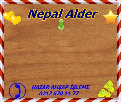 red-Nepal Alder