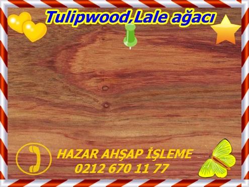 tulipwood-sealed