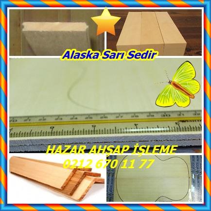 catsAlaska Sarı Sedir 6766
