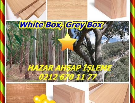 White Box, Grey Box,(Eucalyptus hemiphloia),Beyaz Kasa, Gri Kutusu,Okaliptüs microcarpa ,Okaliptüs moluccana ,Okaliptüs hemiphloia