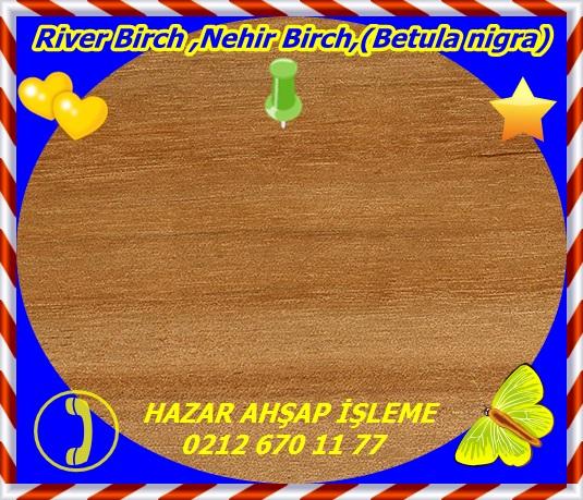 river-birch-sealed