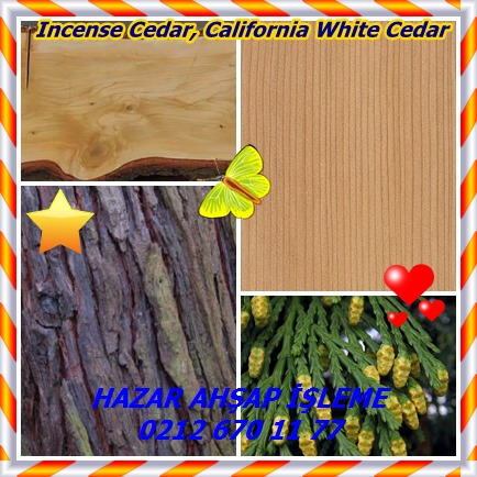 catsIncense Cedar, California White Cedar12