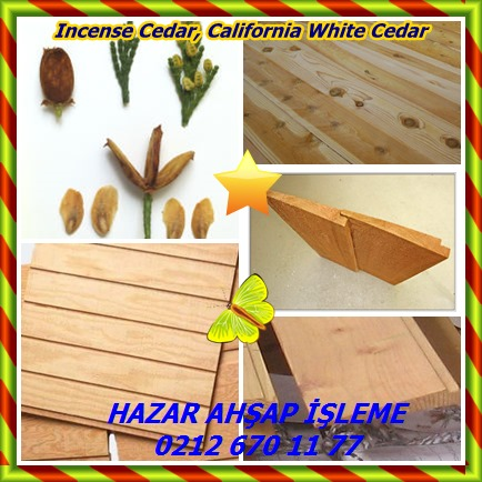 catsIncense Cedar, California White Cedar39658
