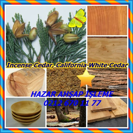 catsIncense Cedar, California White Cedar65