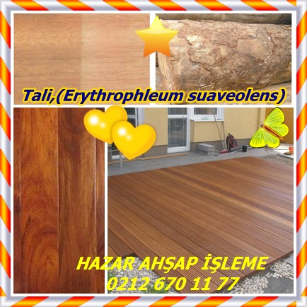 catsTali,(Erythrophleum suaveolens)2152